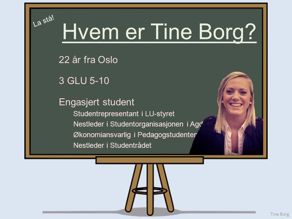 Tine Borg 22 år fra Oslo 3 GLU 5-10 Engasjert student Studentrepresentant i LU-styret Nestleder i Studentorganisasjonen i Agder (STA) Økonomiansvarlig i Pedagogstudentene på UiA Nestleder i Studentrådet Hvem er Tine Borg.