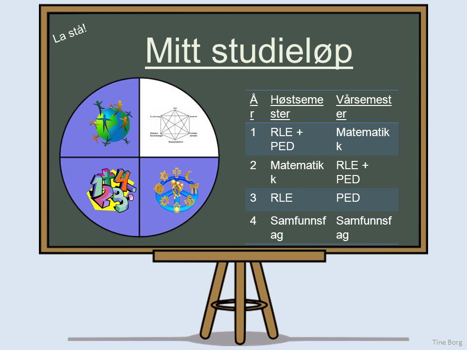 Tine Borg Mitt studieløp ÅrÅr Høstseme ster Vårsemest er 1RLE + PED Matematik k 2 RLE + PED 3RLEPED 4Samfunnsf ag