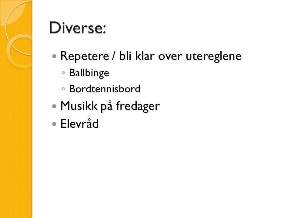 Diverse: Repetere / bli klar over utereglene ◦ Ballbinge ◦ Bordtennisbord Musikk på fredager Elevråd