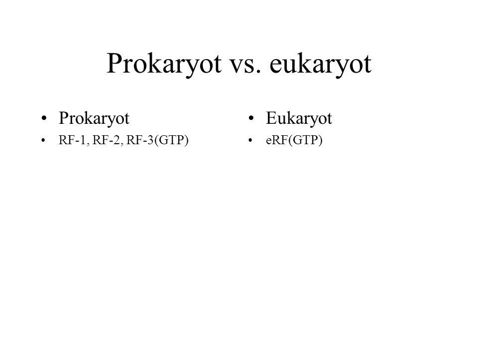 Prokaryot vs. eukaryot Prokaryot RF-1, RF-2, RF-3(GTP) Eukaryot eRF(GTP)