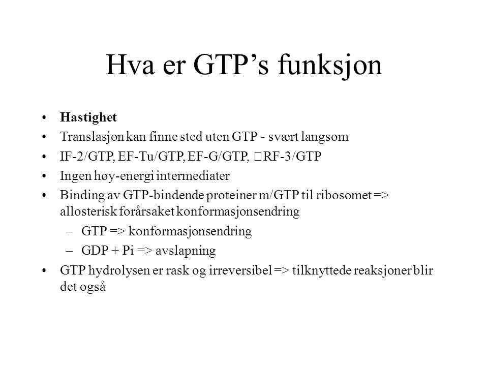 Hva er GTP's funksjon Hastighet Translasjon kan finne sted uten GTP - svært langsom IF-2/GTP, EF-Tu/GTP, EF-G/GTP, RF-3/GTP Ingen høy-energi intermedi