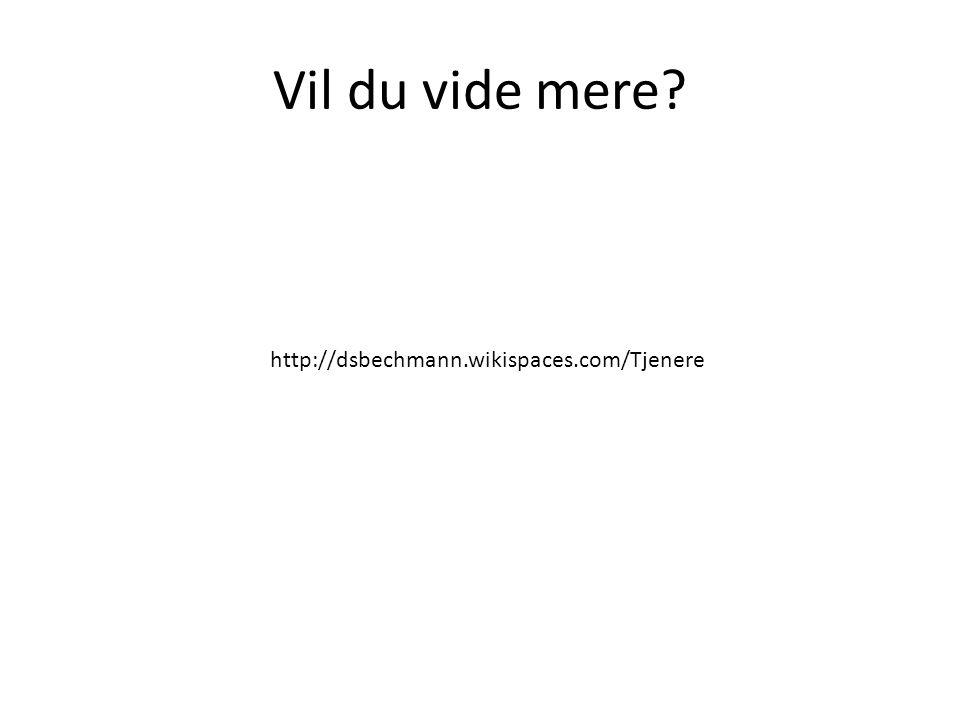 Vil du vide mere? http://dsbechmann.wikispaces.com/Tjenere