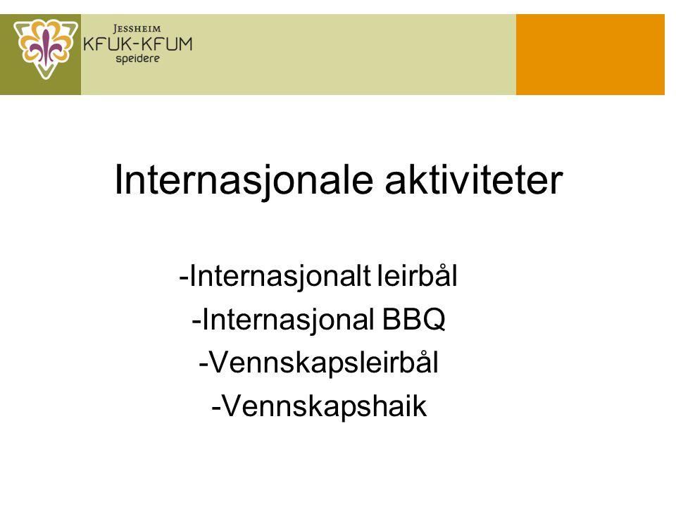 Internasjonale aktiviteter -Internasjonalt leirbål -Internasjonal BBQ -Vennskapsleirbål -Vennskapshaik