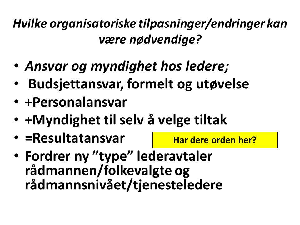 Hvilke organisatoriske tilpasninger/endringer kan være nødvendige? Ansvar og myndighet hos ledere; Budsjettansvar, formelt og utøvelse +Personalansvar