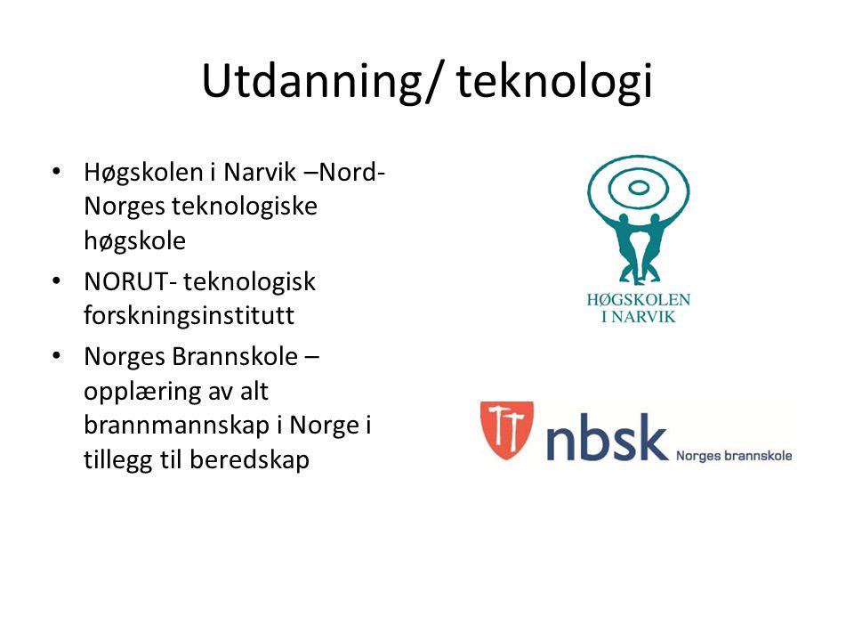 Utdanning/ teknologi Høgskolen i Narvik –Nord- Norges teknologiske høgskole NORUT- teknologisk forskningsinstitutt Norges Brannskole – opplæring av alt brannmannskap i Norge i tillegg til beredskap