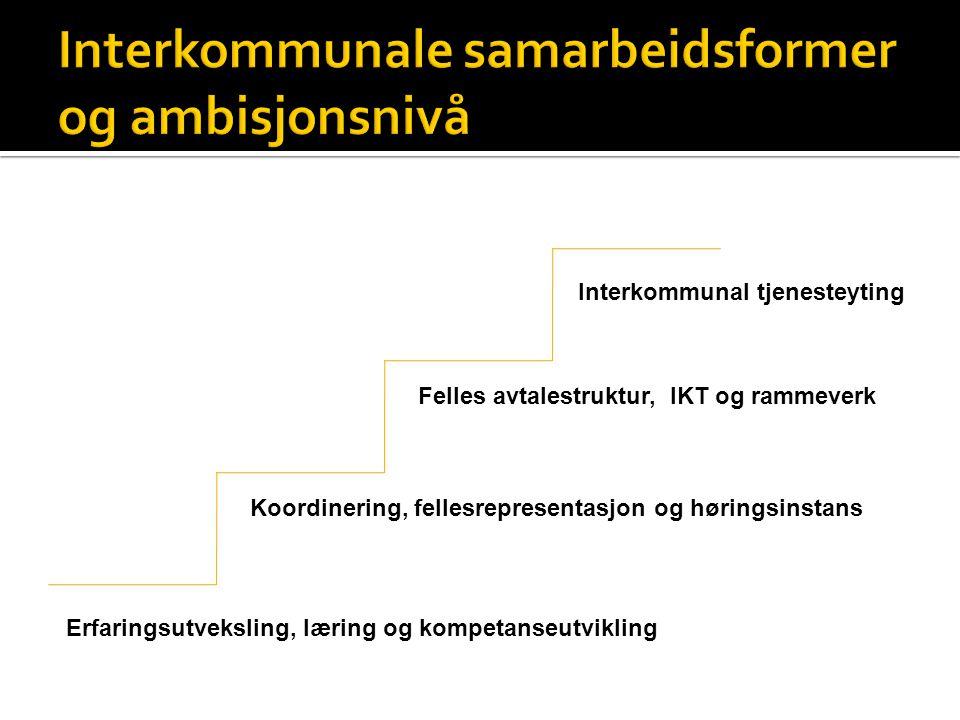 Erfaringsutveksling, læring og kompetanseutvikling Koordinering, fellesrepresentasjon og høringsinstans Felles avtalestruktur, IKT og rammeverk Interkommunal tjenesteyting