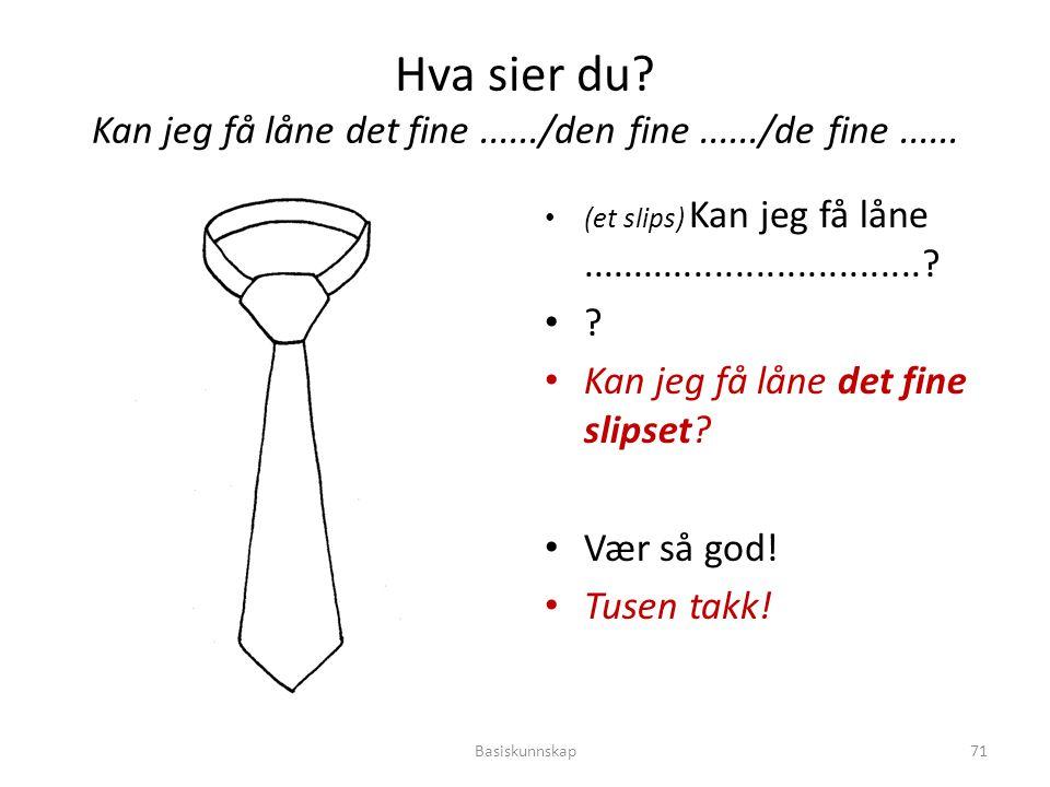 Hva sier du? Kan jeg få låne det fine....../den fine....../de fine...... (et slips) Kan jeg få låne.................................? ? Kan jeg få lån