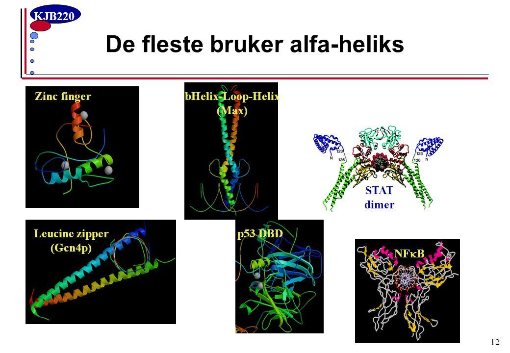 KJB220 12 De fleste bruker alfa-heliks bHelix-Loop-Helix (Max) Zinc finger Leucine zipper (Gcn4p) p53 DBD NF  B STAT dimer