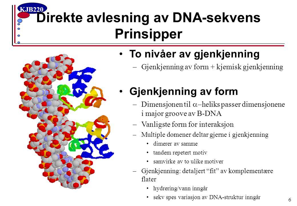 KJB220 6 Direkte avlesning av DNA-sekvens Prinsipper To nivåer av gjenkjenning –Gjenkjenning av form + kjemisk gjenkjenning Gjenkjenning av form –Dime