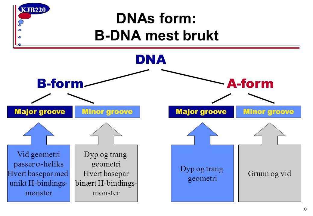 KJB220 20 En strek-kode i gropene AT-basepar GC-basepar Unik strekkode i major groove D A A ADA AT-basepar Binær strekkode i minor groove AA GC-basepar AAD AT-par [AD-A] ≠ TA-par [A-DA] GC-par [AA-D] ≠ CG-par [D-AA] AT-par [A-A] = TA-par [A-A] GC-par [ADA] = CG-par [ADA] Unik gjenkjenning av et basepar krever TO hydrogenbindinger i major groove