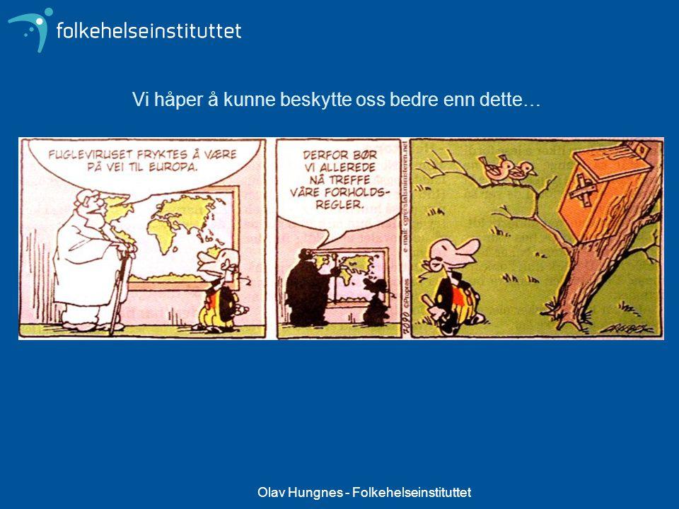 Olav Hungnes - Folkehelseinstituttet Vi håper å kunne beskytte oss bedre enn dette…