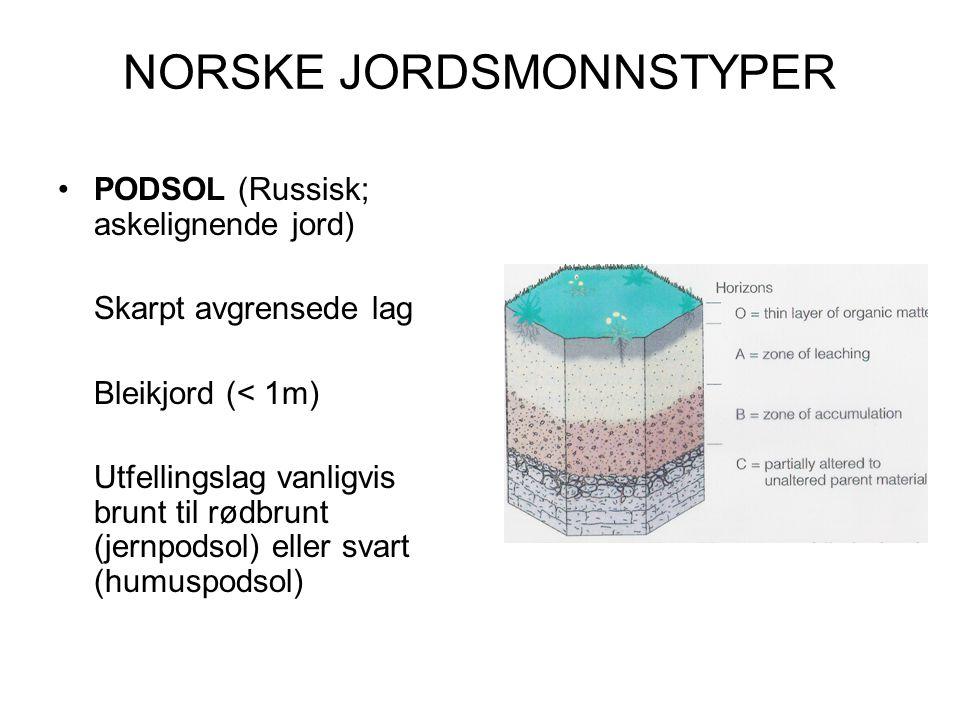NORSKE JORDSMONNSTYPER PODSOL (Russisk; askelignende jord) Skarpt avgrensede lag Bleikjord (< 1m) Utfellingslag vanligvis brunt til rødbrunt (jernpods