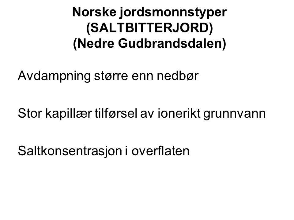 Norske jordsmonnstyper (SALTBITTERJORD) (Nedre Gudbrandsdalen) Avdampning større enn nedbør Stor kapillær tilførsel av ionerikt grunnvann Saltkonsentr
