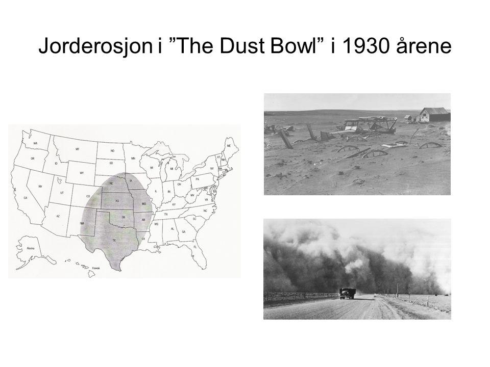 """Jorderosjon i """"The Dust Bowl"""" i 1930 årene"""