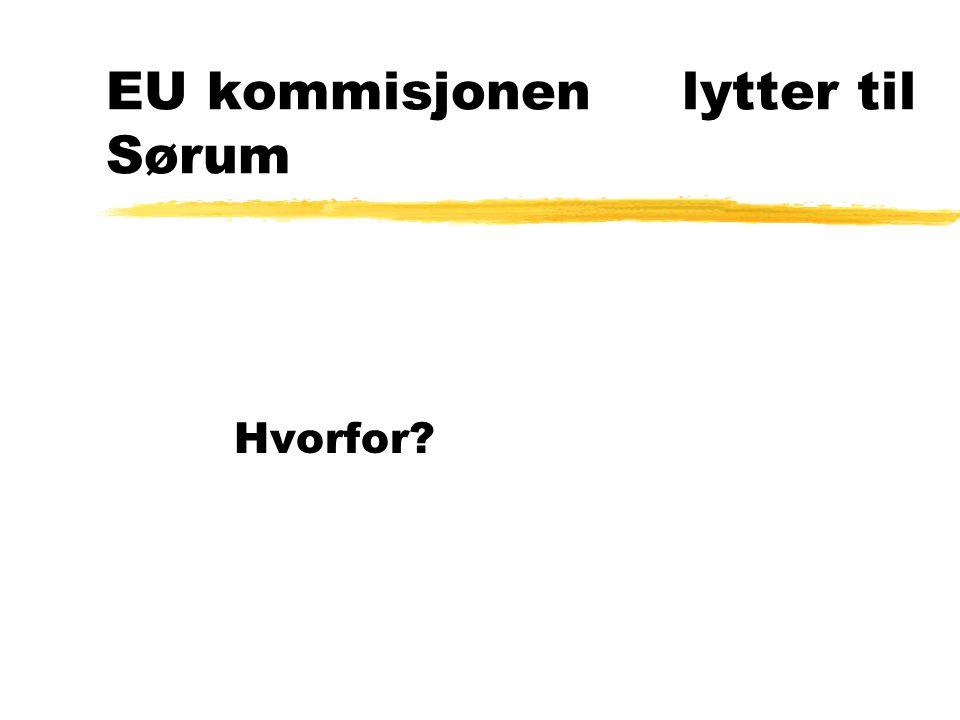 EU kommisjonenlytter til Sørum Hvorfor