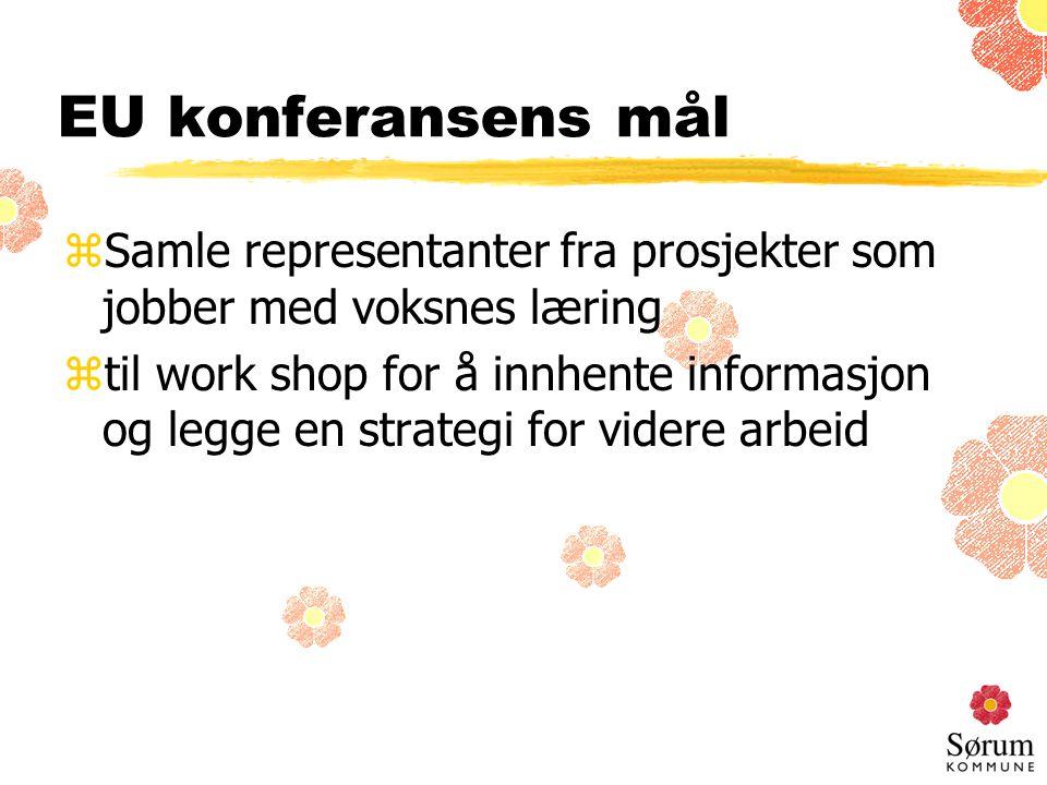 EU konferansens mål zSamle representanter fra prosjekter som jobber med voksnes læring ztil work shop for å innhente informasjon og legge en strategi for videre arbeid