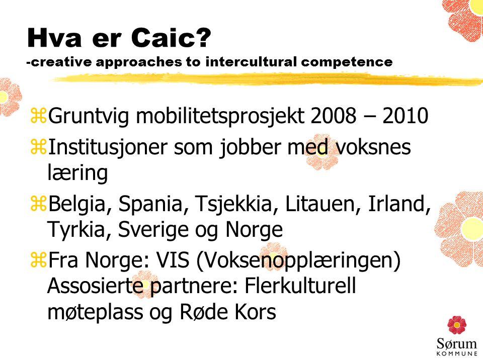 Hva er Caic.