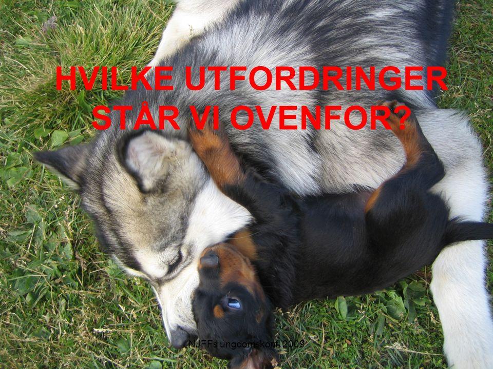 HVILKE UTFORDRINGER STÅR VI OVENFOR NJFFs ungdomskonf. 2009