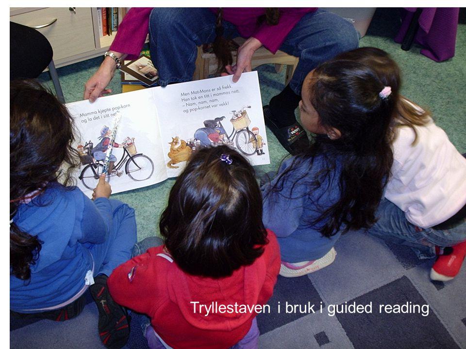 Veggene er pedagogiske hjelpemidler