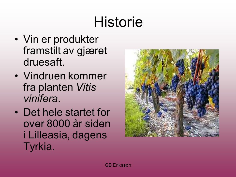 GB Eriksson Historie Vin er produkter framstilt av gjæret druesaft. Vindruen kommer fra planten Vitis vinifera. Det hele startet for over 8000 år side