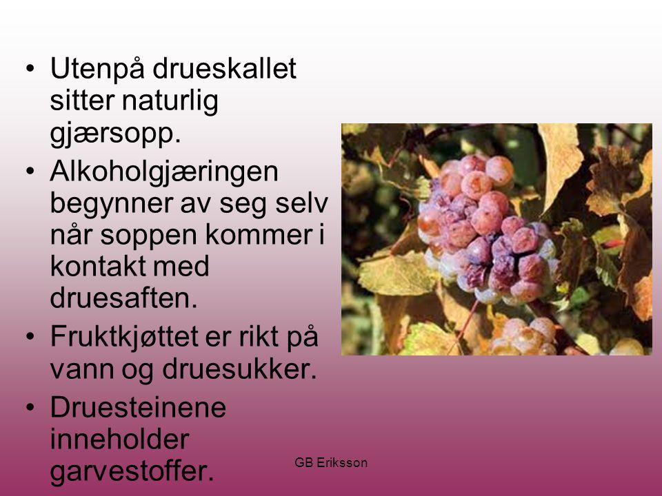GB Eriksson Utenpå drueskallet sitter naturlig gjærsopp. Alkoholgjæringen begynner av seg selv når soppen kommer i kontakt med druesaften. Fruktkjøtte