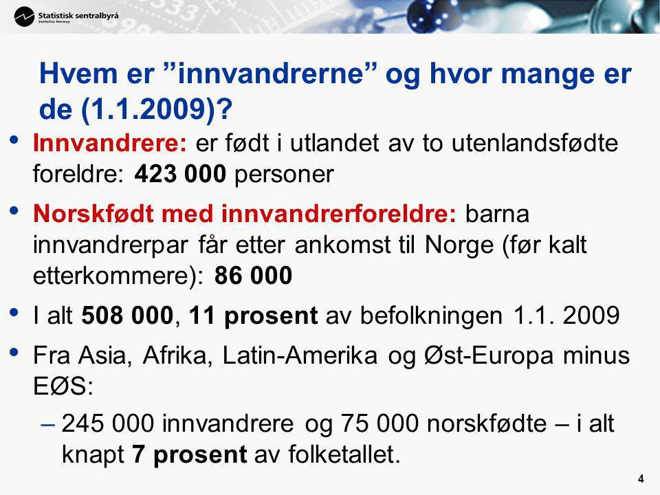4 Hvem er innvandrerne og hvor mange er de (1.1.2009).