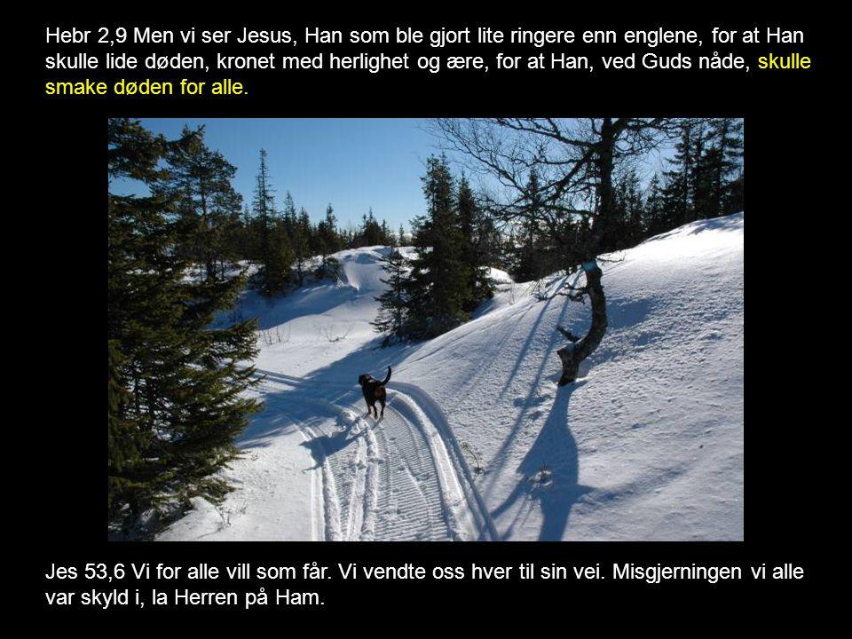 Hebr 2,9 Men vi ser Jesus, Han som ble gjort lite ringere enn englene, for at Han skulle lide døden, kronet med herlighet og ære, for at Han, ved Guds