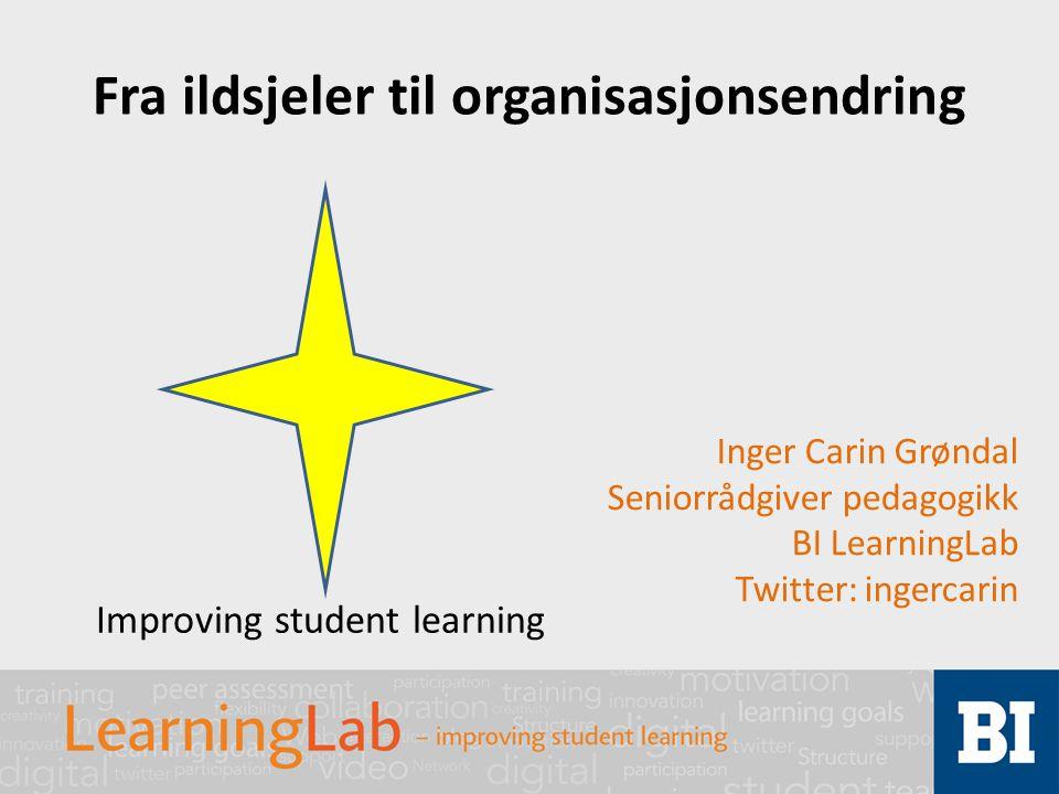 Fra ildsjeler til organisasjonsendring Inger Carin Grøndal Seniorrådgiver pedagogikk BI LearningLab Twitter: ingercarin Improving student learning