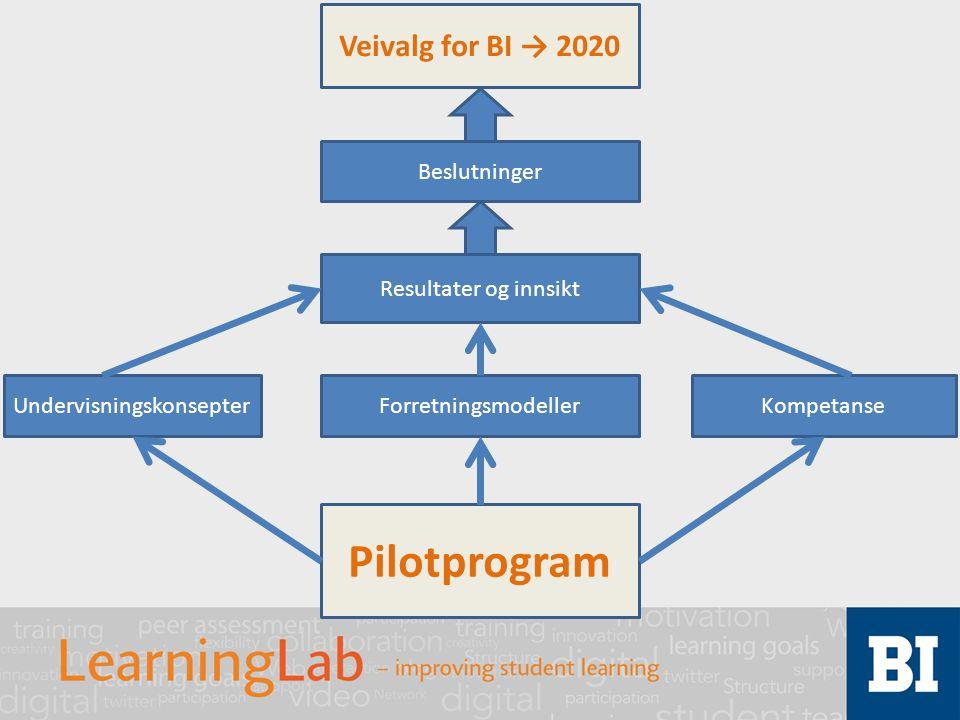 Pilotprogram UndervisningskonsepterForretningsmodellerKompetanse Resultater og innsikt Beslutninger Veivalg for BI → 2020