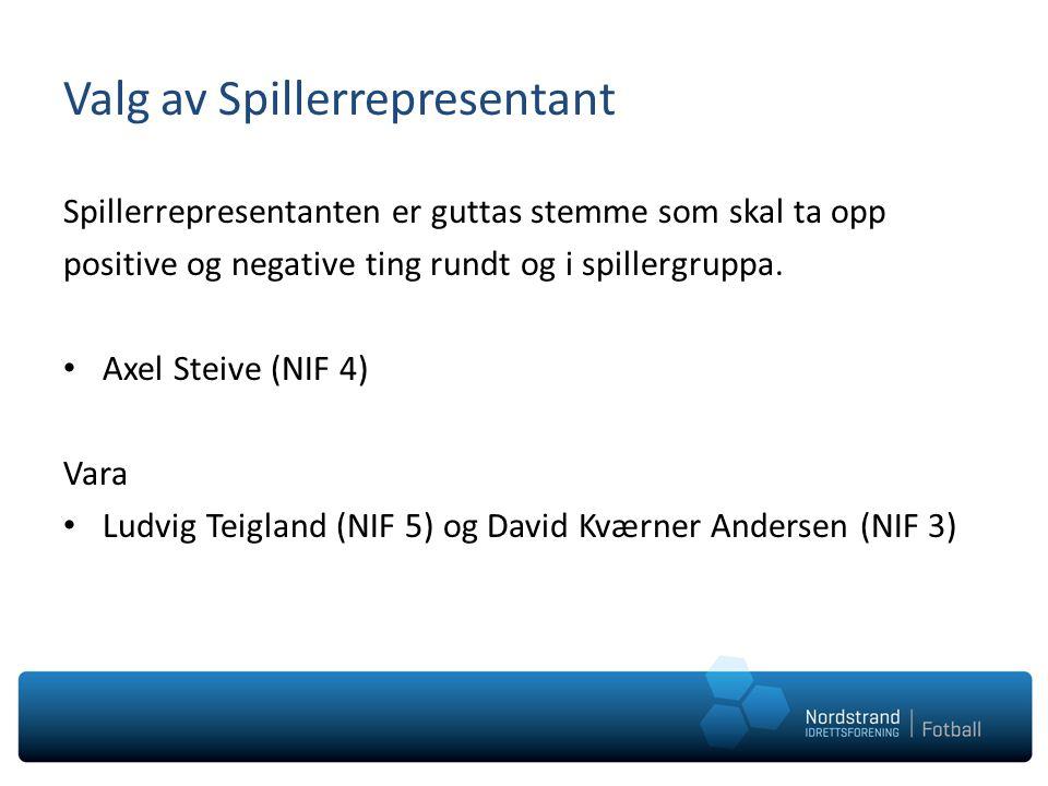 Valg av Spillerrepresentant Spillerrepresentanten er guttas stemme som skal ta opp positive og negative ting rundt og i spillergruppa. Axel Steive (NI