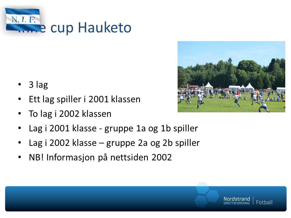 Inne cup Hauketo 3 lag Ett lag spiller i 2001 klassen To lag i 2002 klassen Lag i 2001 klasse - gruppe 1a og 1b spiller Lag i 2002 klasse – gruppe 2a