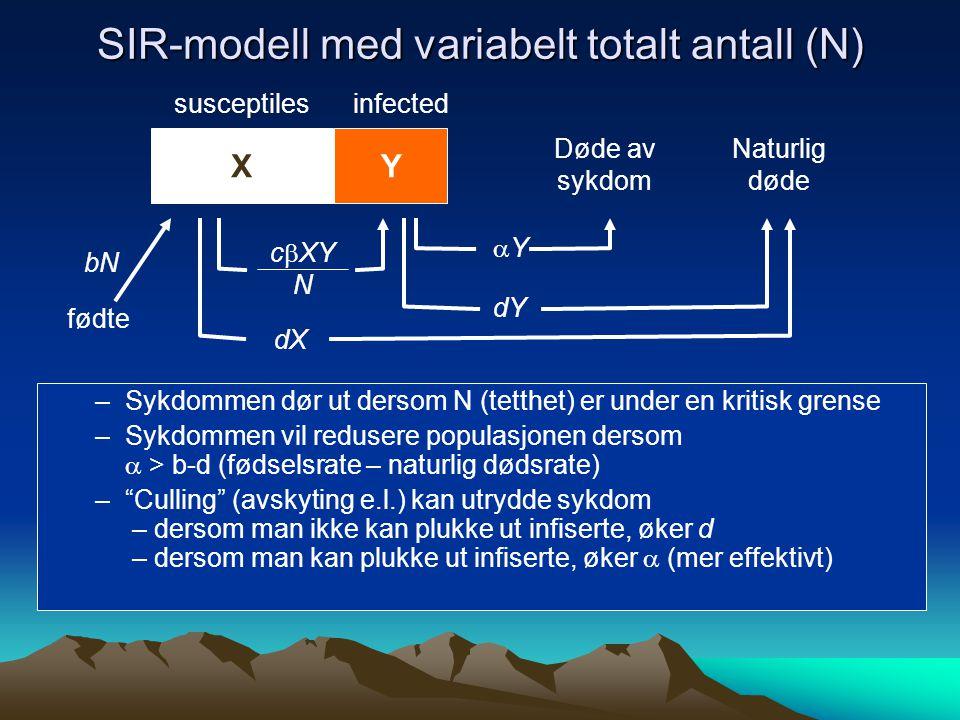 SIR-modell med variabelt totalt antall (N) YX c  XY N YY susceptilesinfected Døde av sykdom –Sykdommen dør ut dersom N (tetthet) er under en kritisk grense –Sykdommen vil redusere populasjonen dersom  > b-d (fødselsrate – naturlig dødsrate) – Culling (avskyting e.l.) kan utrydde sykdom – dersom man ikke kan plukke ut infiserte, øker d – dersom man kan plukke ut infiserte, øker  (mer effektivt) fødte bN Naturlig døde dX dY