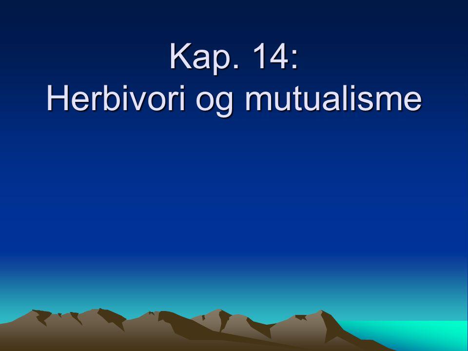 Kap. 14: Herbivori og mutualisme