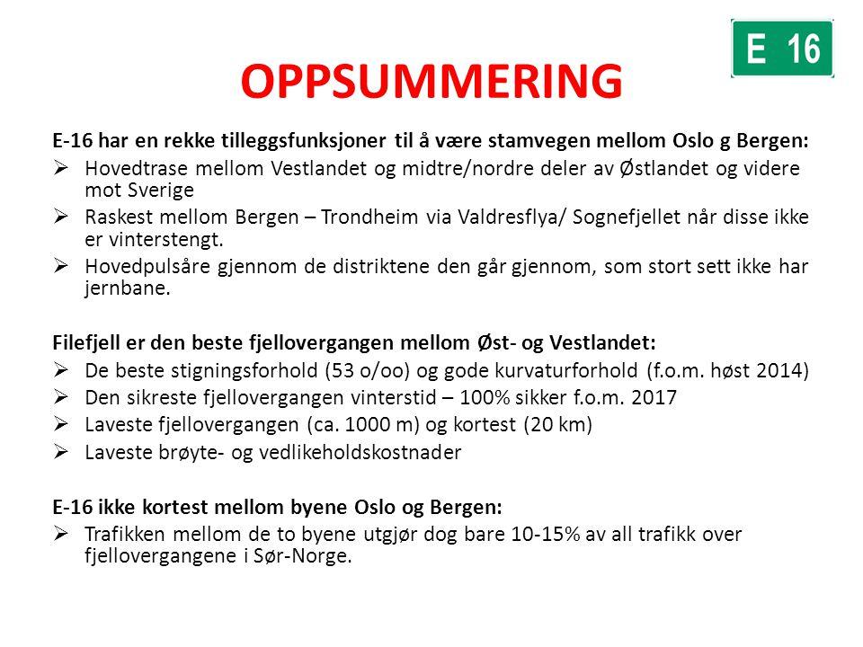 OPPSUMMERING E-16 har en rekke tilleggsfunksjoner til å være stamvegen mellom Oslo g Bergen:  Hovedtrase mellom Vestlandet og midtre/nordre deler av