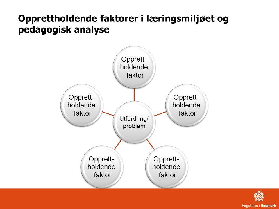 Opprettholdende faktorer i læringsmiljøet og pedagogisk analyse Utfordring/ problem Opprett- holdende faktor Opprett- holdende faktor Opprett- holdend