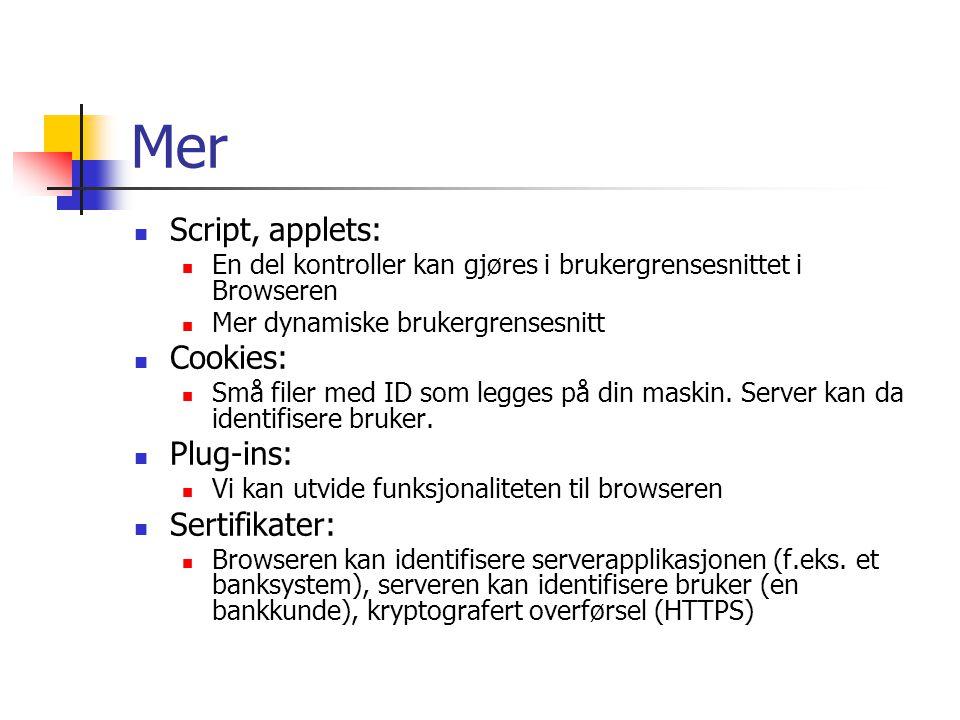 Mer Script, applets: En del kontroller kan gjøres i brukergrensesnittet i Browseren Mer dynamiske brukergrensesnitt Cookies: Små filer med ID som legg