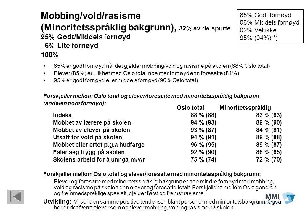 Mobbing/vold/rasisme (Minoritetsspråklig bakgrunn), 32% av de spurte 95% Godt/Middels fornøyd 6% Lite fornøyd 100% 85% er godt fornøyd når det gjelder