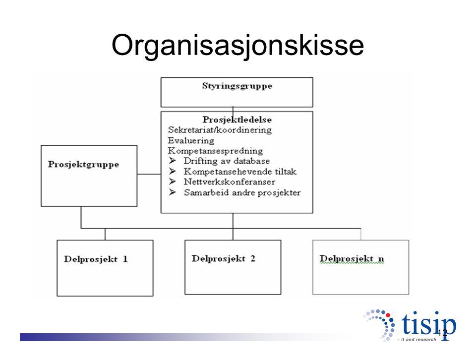 12 Organisasjonskisse