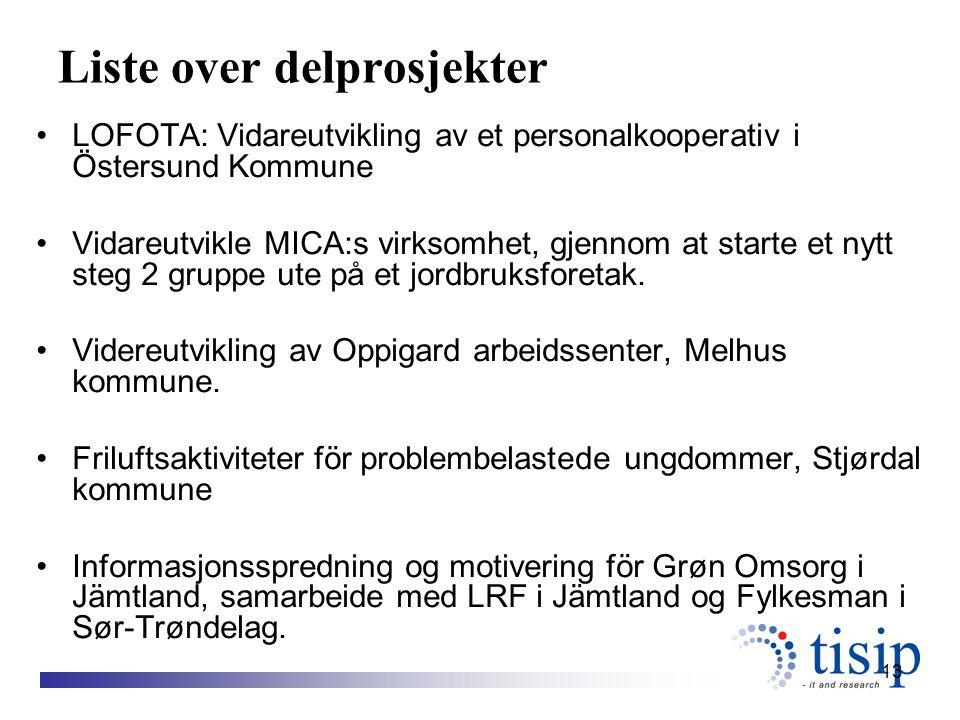 13 Liste over delprosjekter LOFOTA: Vidareutvikling av et personalkooperativ i Östersund Kommune Vidareutvikle MICA:s virksomhet, gjennom at starte et