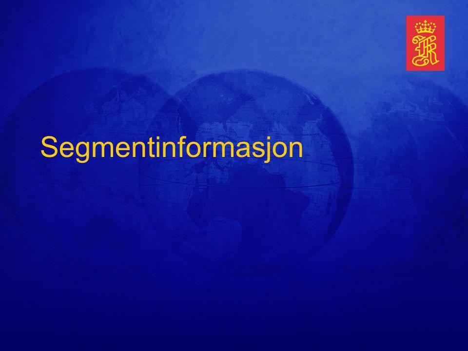 Segmentinformasjon