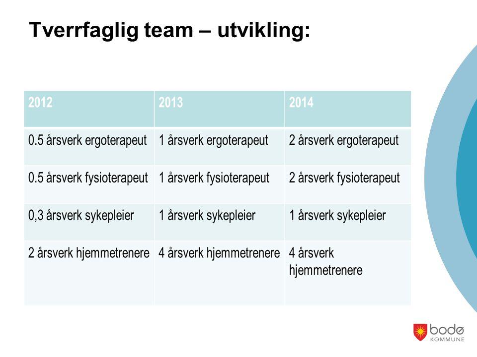 Tverrfaglig team – utvikling: