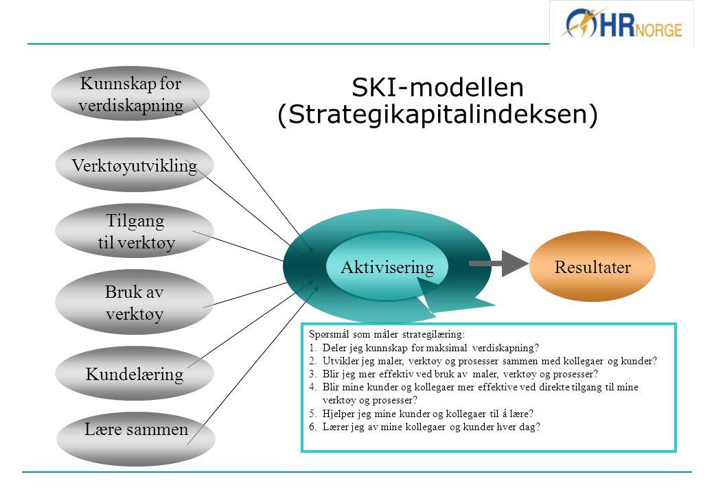Kunnskap for verdiskapning AktiviseringResultater Verktøyutvikling Tilgang til verktøy Bruk av verktøy Kundelæring Lære sammen SKI-modellen (Strategik