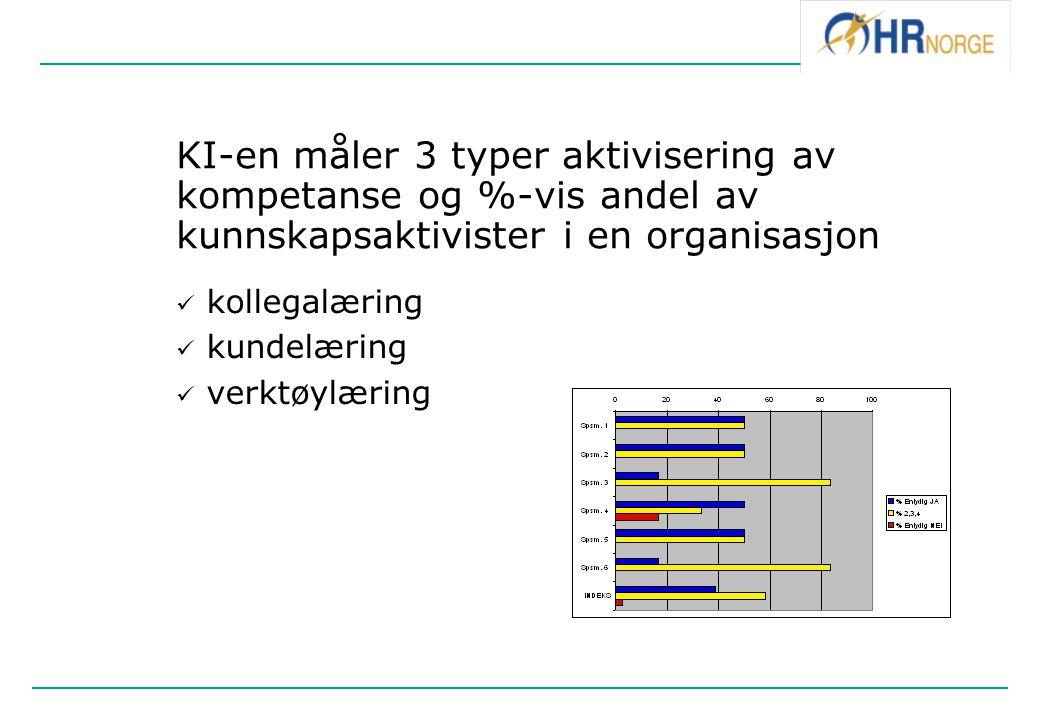 KI-en måler 3 typer aktivisering av kompetanse og %-vis andel av kunnskapsaktivister i en organisasjon kollegalæring kundelæring verktøylæring