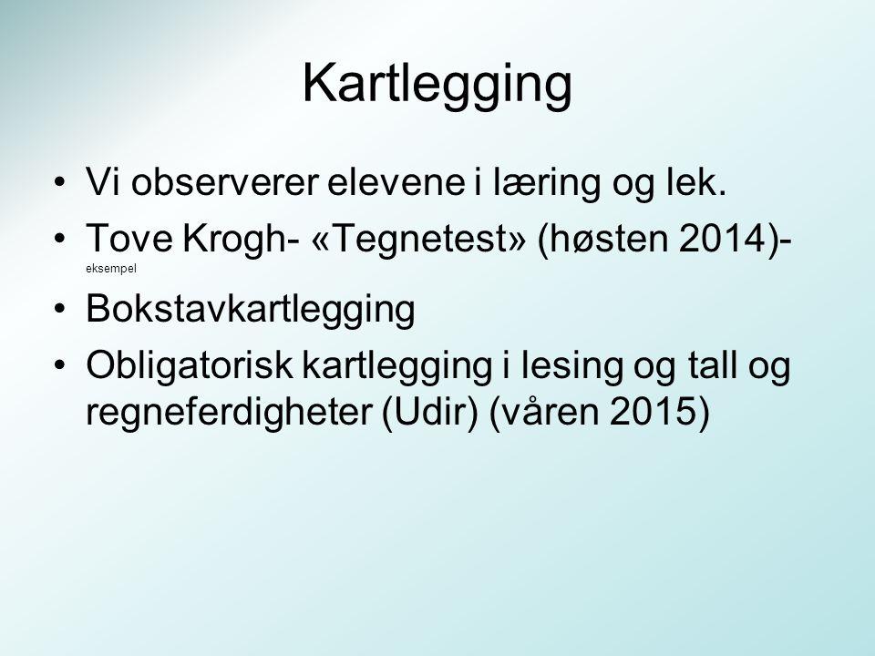 Kartlegging Vi observerer elevene i læring og lek. Tove Krogh- «Tegnetest» (høsten 2014)- eksempel Bokstavkartlegging Obligatorisk kartlegging i lesin