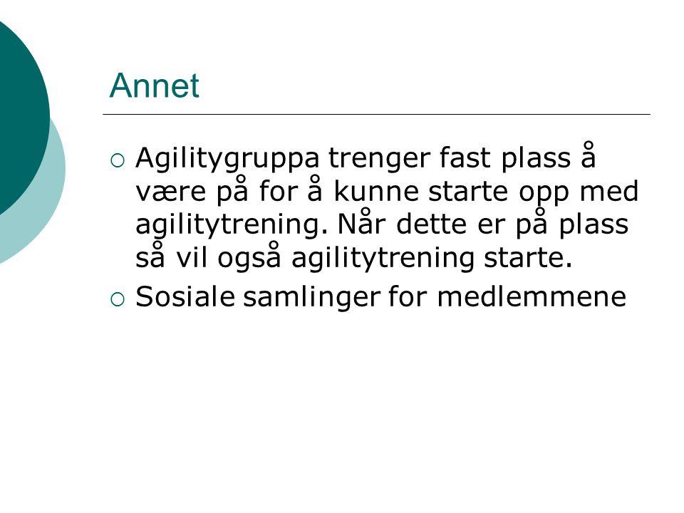 Annet  Agilitygruppa trenger fast plass å være på for å kunne starte opp med agilitytrening.