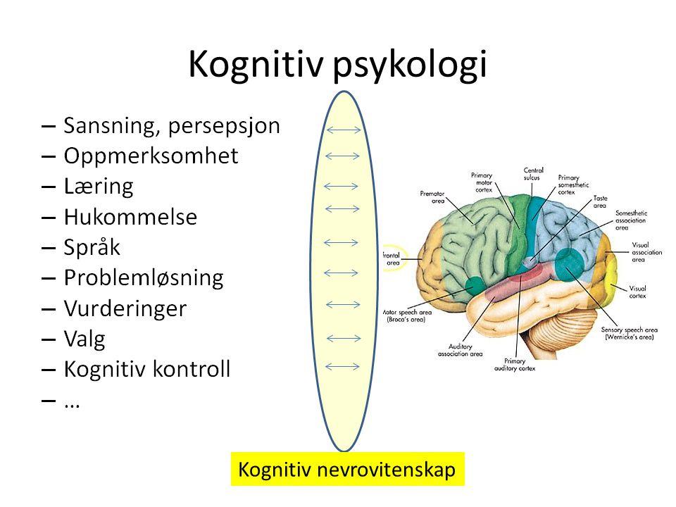 Kognitiv psykologi Regelstyring: Forskjellig mindset Pre-decisional phase Post-decisional phase Golwitzer DELIBERATIVE MINDSET Åpen for ny informasjon Tolker ulik informasjon på en unbiased måte, eks.