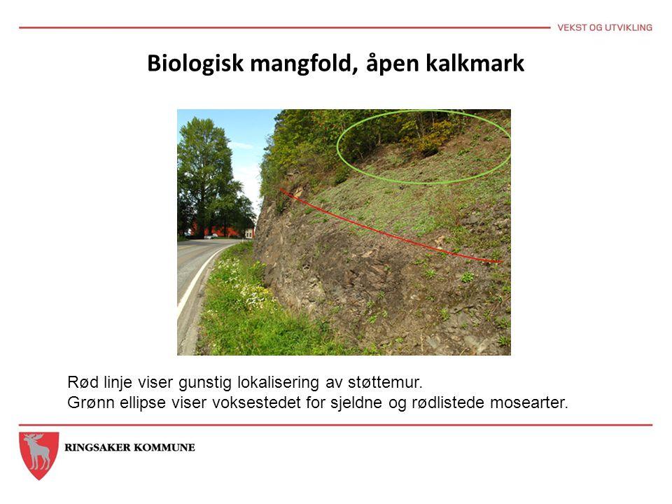 Biologisk mangfold, åpen kalkmark Rød linje viser gunstig lokalisering av støttemur. Grønn ellipse viser voksestedet for sjeldne og rødlistede moseart