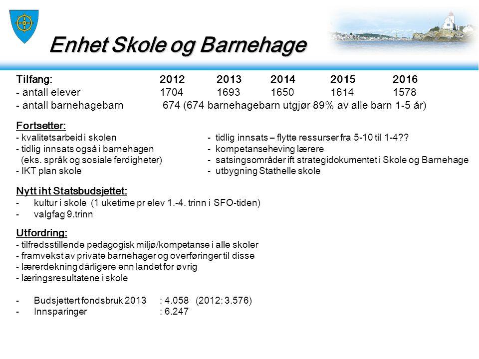 Enhet Helse og Omsorg Enhet Helse og Omsorg Tilfang: 2012 2013 2014 2015 2016 - antall som mottar pleie og omsorg 1037 1071 .