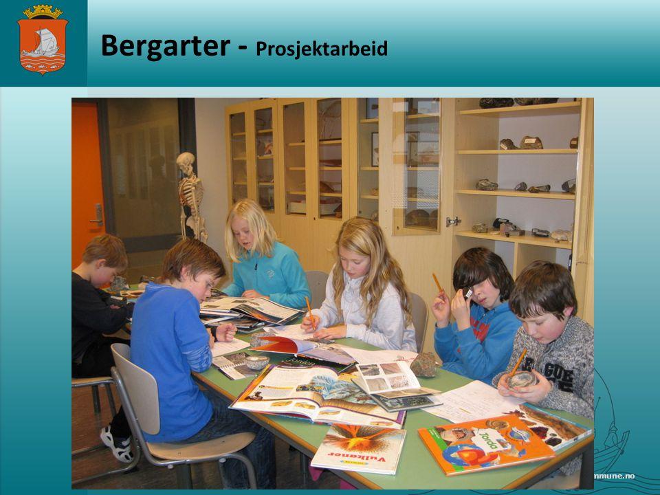 www.alesund.kommune.no Bergarter - Prosjektarbeid