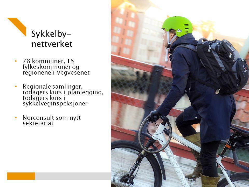 Sykkelby- nettverket 78 kommuner, 15 fylkeskommuner og regionene i Vegvesenet Regionale samlinger, todagers kurs i planlegging, todagers kurs i sykkelveginspeksjoner Norconsult som nytt sekretariat Foto: Knut Opeide